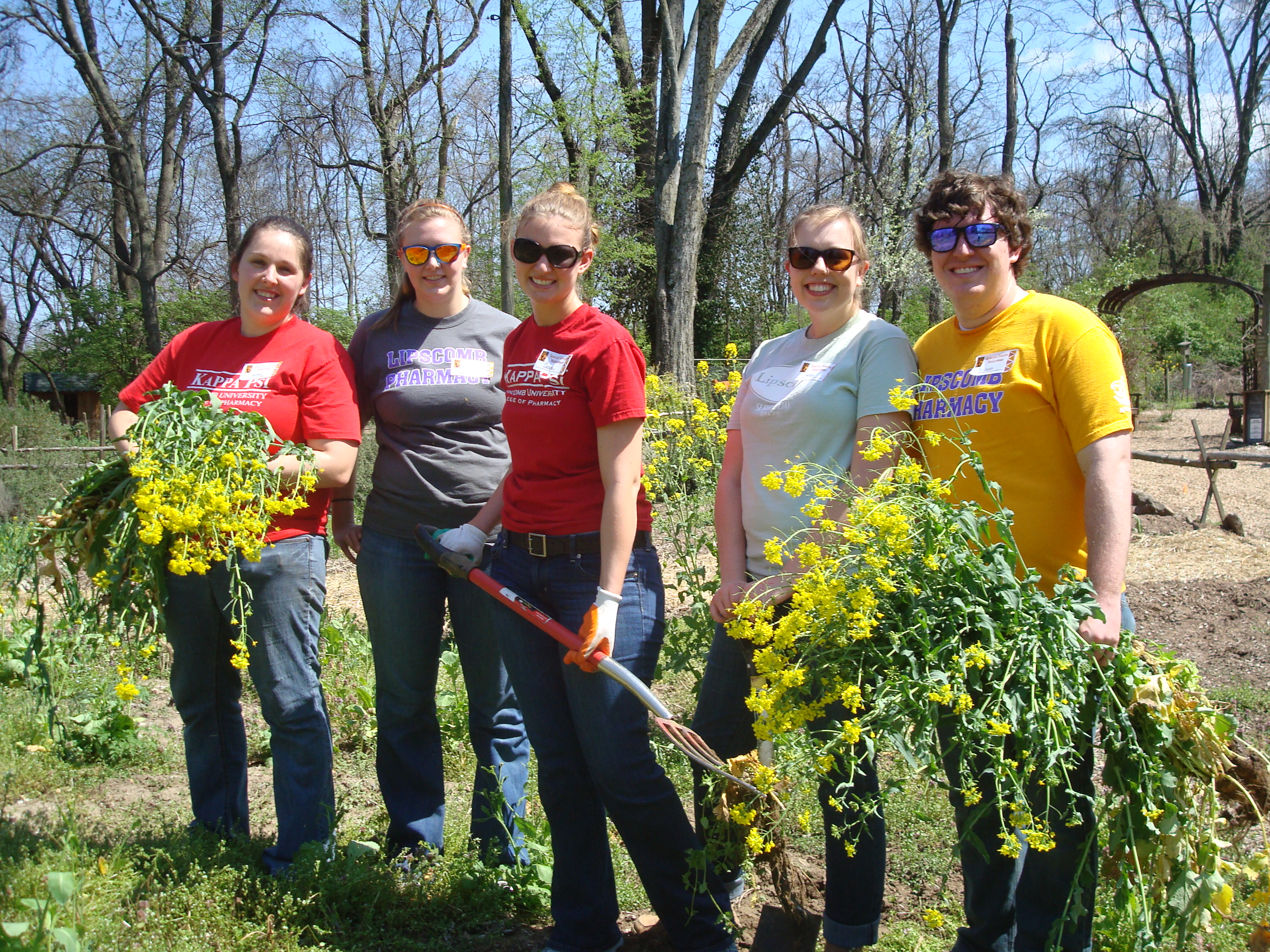 Master Gardeners Of Davidson County About Us